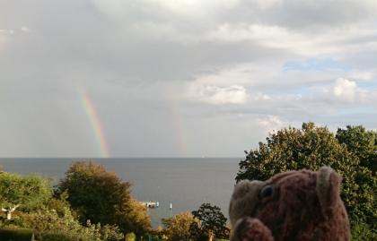 regenbogenbaer