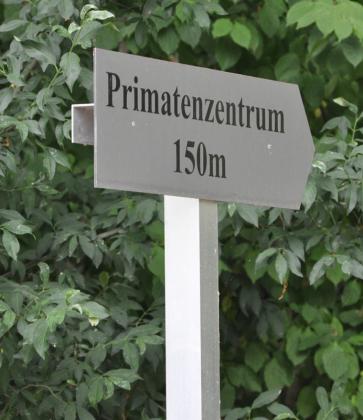 primatenzentrum