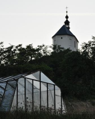 gewaechshaus