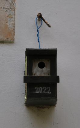 vogelspatz